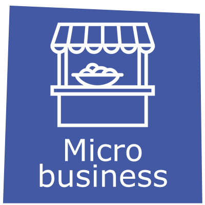 Micro business - title.png
